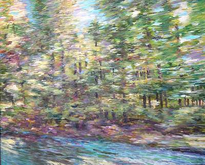 Painting - The Summer Sped By by Denise Ivey Telep