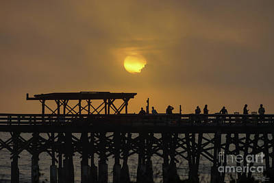 Photograph - The Sun Comes Out by Jennifer White