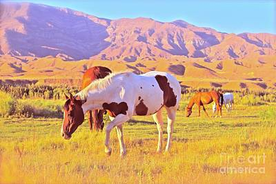 Paint Horse Digital Art - 'the Sundowners' by Gus McCrea