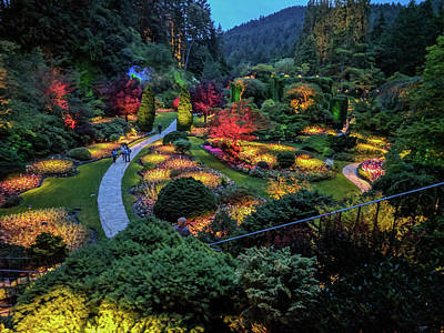 Photograph - The Sunken Garden At Dusk by Michael Bessler