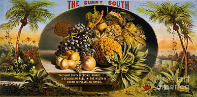 Food And Beverage Mixed Media - The Sunny South Vintage Fruit Label by Edward Fielding
