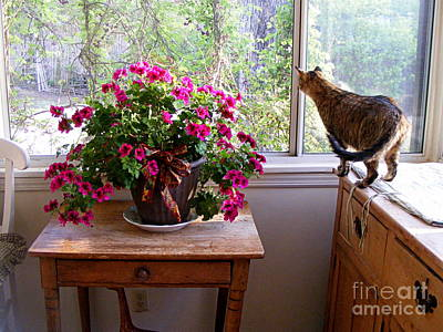 Photograph - The Sunroom In April by Nancy Kane Chapman