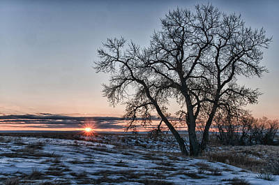 Photograph - The Sun's Rising by Monte Stevens