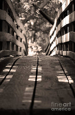 Photograph - The Suspended Footbridge by Robert Meanor