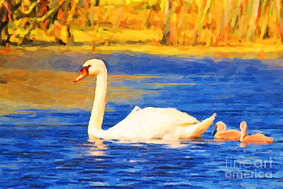 The Swan Family . Photoart Art Print by Wingsdomain Art and Photography