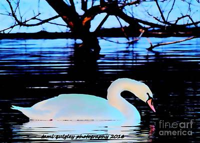Photograph - The Swan's Winter Evening by Tami Quigley