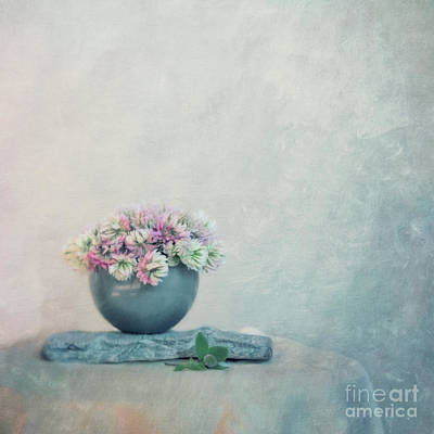 Light Blue Photograph - The Sweet Scent Of Clover by Priska Wettstein