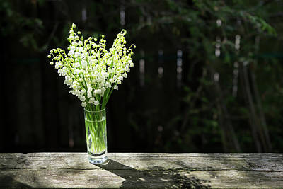 Photograph - The Sweet Scent Of Spring - A Tiny Lily-of-the-valley Bouquet Perfuming The Air by Georgia Mizuleva
