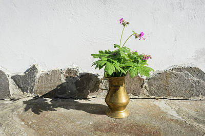Photograph - The Sweet Scent Of Summer - Fragrant Cranesbill Flowers In Antique Bronze Vase by Georgia Mizuleva