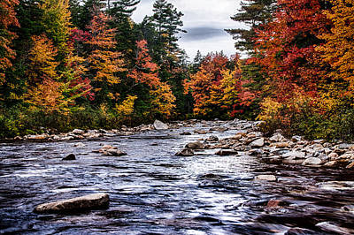 The Swiftriver Through The Fall Colors Print by Jeff Folger