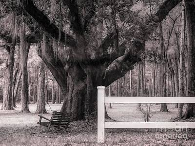 Photograph - The Swing Oil Painting Effect by Paulette Thomas