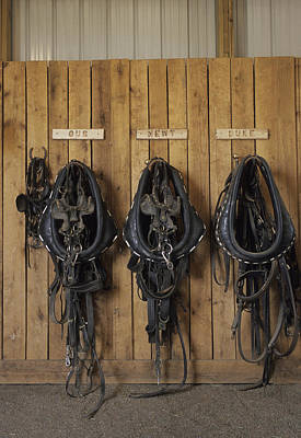 The Tack Room At The Saddleback Ranch Art Print