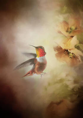 Hummingbirds Photograph - The Take Off by Lynn Bauer