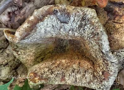Talking Mixed Media - The Talking Mushroom by MaryLee Parker