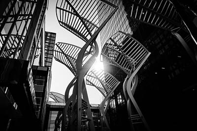 Photograph - The Tangle - Calgary by Desmond Raymond