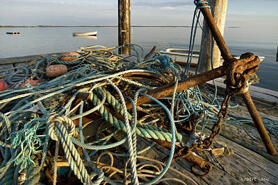 Scandanavia Photograph - The Tangle by Robert Lacy
