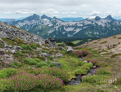 Photograph - The Tatoosh Range by Sharon Seaward