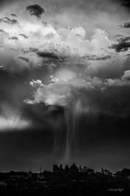 Photograph - The Tease by Karen Slagle