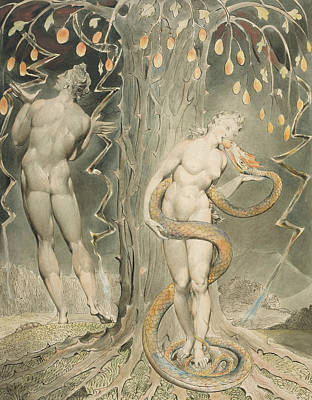 William Blake Painting - The Temptation And Fall Of Eve by William Blake