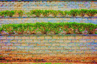 Photograph - The Terraced Wall by Lewis Mann