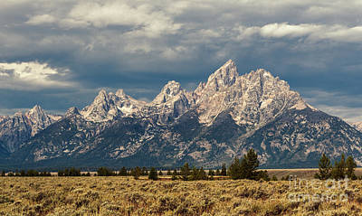 Photograph - The Tetons by Sharon Seaward