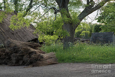 Photograph - The Thatched Roof, Great Dixter by Perry Rodriguez