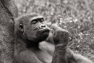 Photograph - The Thinker - Black And White by Angela Rath