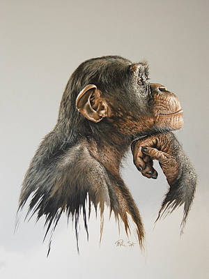 Chimpanzee Painting - The Thinker by Mario Pichler