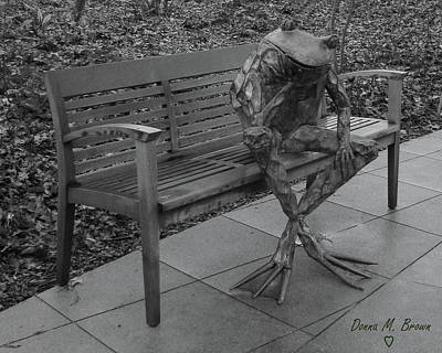 Photograph - The Thinking Frog by Donna Brown