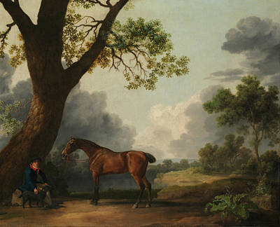 Painting - The Third Duke Of Dorset's Hunter With A Groom And A Dog by George Stubbs
