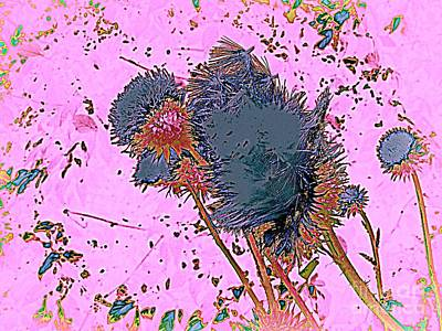Digital Art - The Thistle 2 by Nancy Kane Chapman