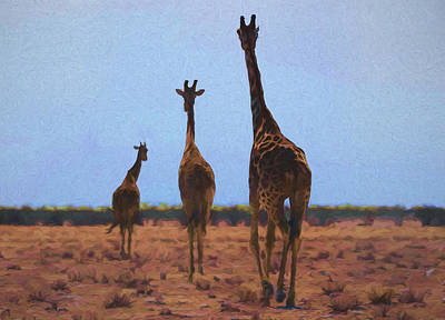 Digital Art - The Three Giraffes by Ernie Echols