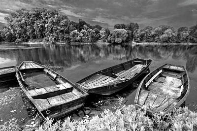 Photograph - The Three Musketeers In Black And White by Debra and Dave Vanderlaan