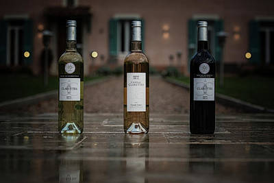 Vino Photograph - The Three Musketeers by Kim Blomqvist