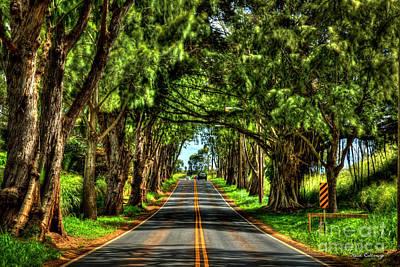 Photograph - The Thruway Kaukonahua Road Oahu Hawaii Art by Reid Callaway