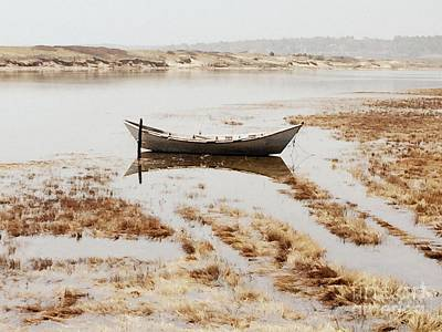 Photograph - The Tide Is Rising by Marcia Lee Jones