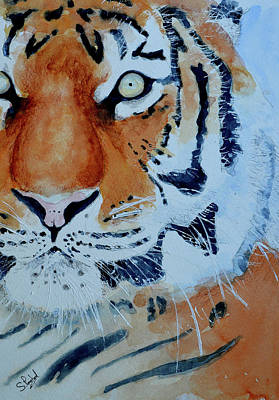 Painting - The Tiger by Steven Ponsford