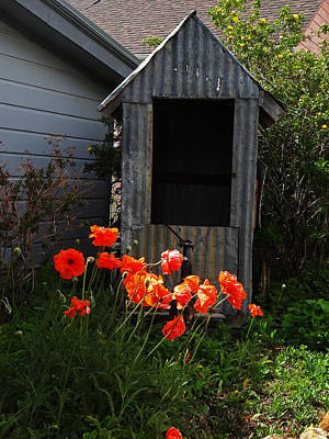 Photograph - The Tin Shed by Jacqueline  DiAnne Wasson