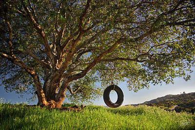 Photograph - The Tire Swing by Endre Balogh