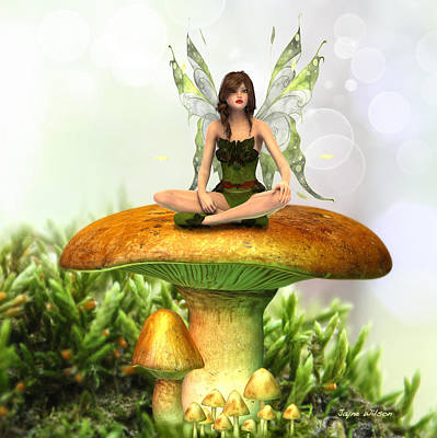 The Toadstool Fairy Art Print