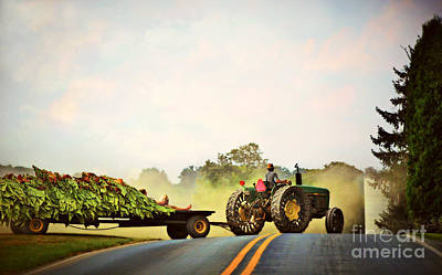 Photograph - The Tobacco Farmers Wife by Beth Ferris Sale