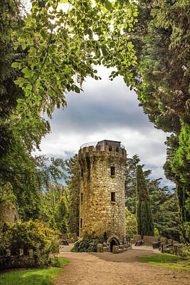 Photograph - The Tower At Powerscourt Gardens by Debra and Dave Vanderlaan