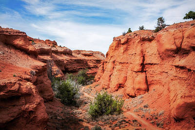 Photograph - The Trail Through Kodachrome Basin State Park by Daniela Constantinescu