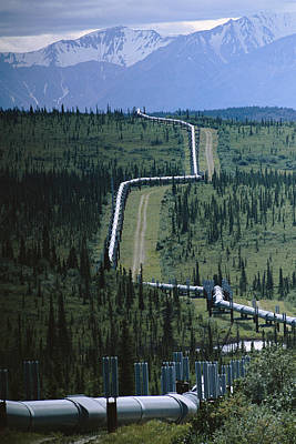 Man And Nature Photograph - The Trans-alaska Pipeline Cuts by Melissa Farlow
