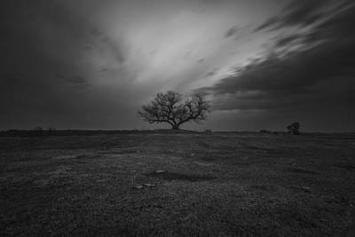 Photograph - The Tree by Aaron J Groen