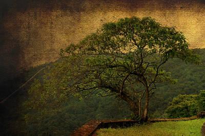 The Tree And The Range Art Print by Valmir Ribeiro