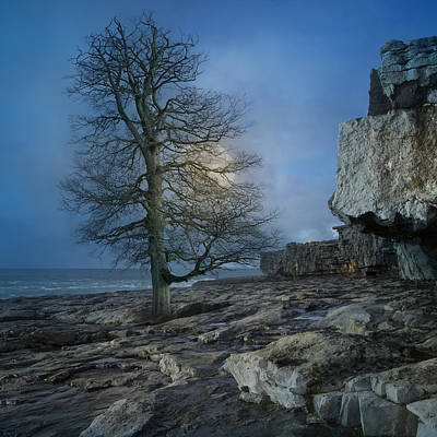 Beautiful Scenery Digital Art - The Tree Of Inis Mor by Betsy Knapp