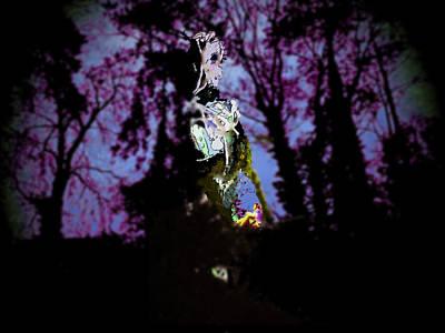 Platonic Digital Art - The Tree Spirit by Sammy Eagleson
