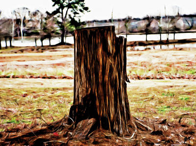 Photograph - The Tree Stump by Gina O'Brien
