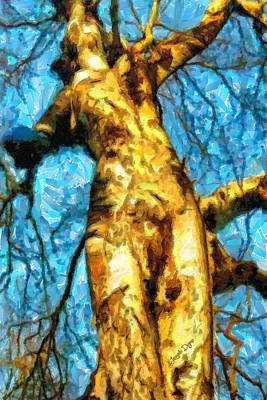 Dried Painting - The Tree That Wanted To Be A Woman - Pa by Leonardo Digenio